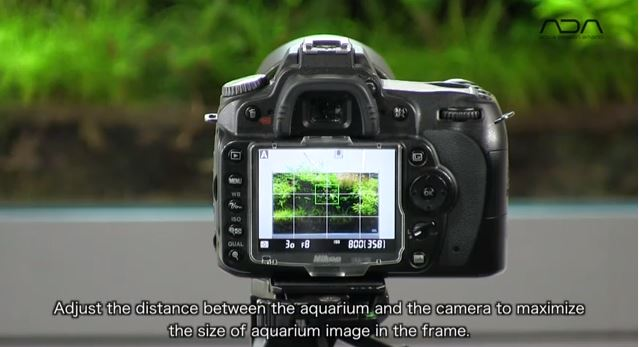 how to shoot aquarium ada